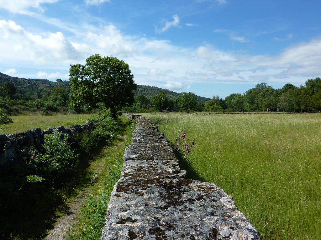 Caminho Interior de Santiago de Compostela em Vila Pouca de Aguiar passa por campos agrícolas